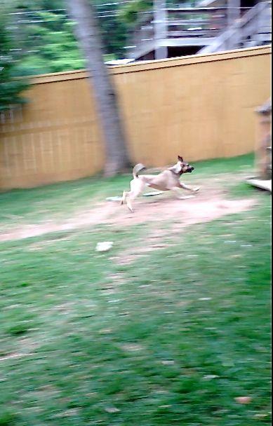 Clara Running