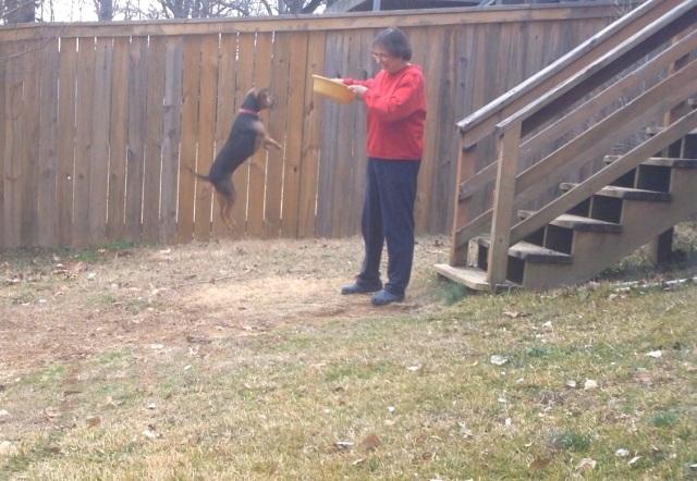 Zani catching some air